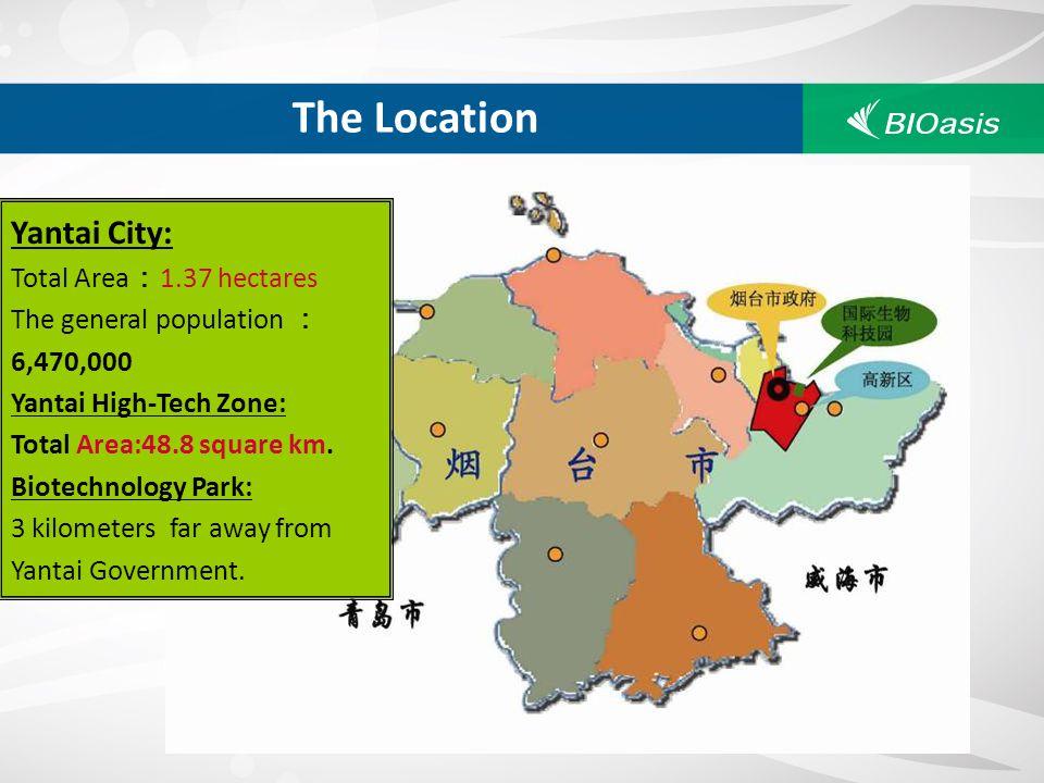 The Location Yantai City: