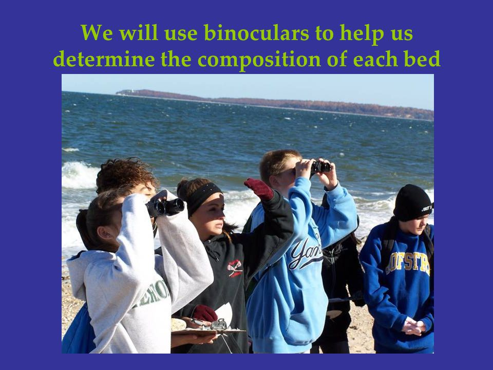 We will use binoculars to help us determine the composition of each bed