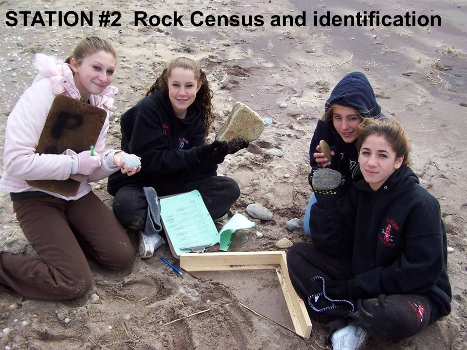 STATION #2 Rock Census and identification