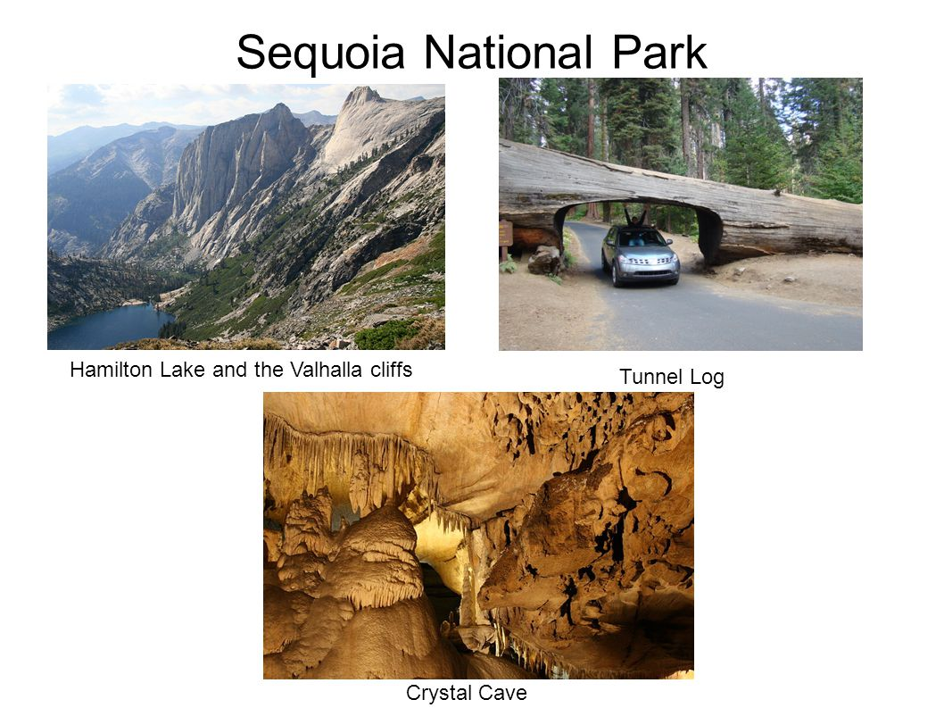 Sequoia National Park Hamilton Lake and the Valhalla cliffs Tunnel Log