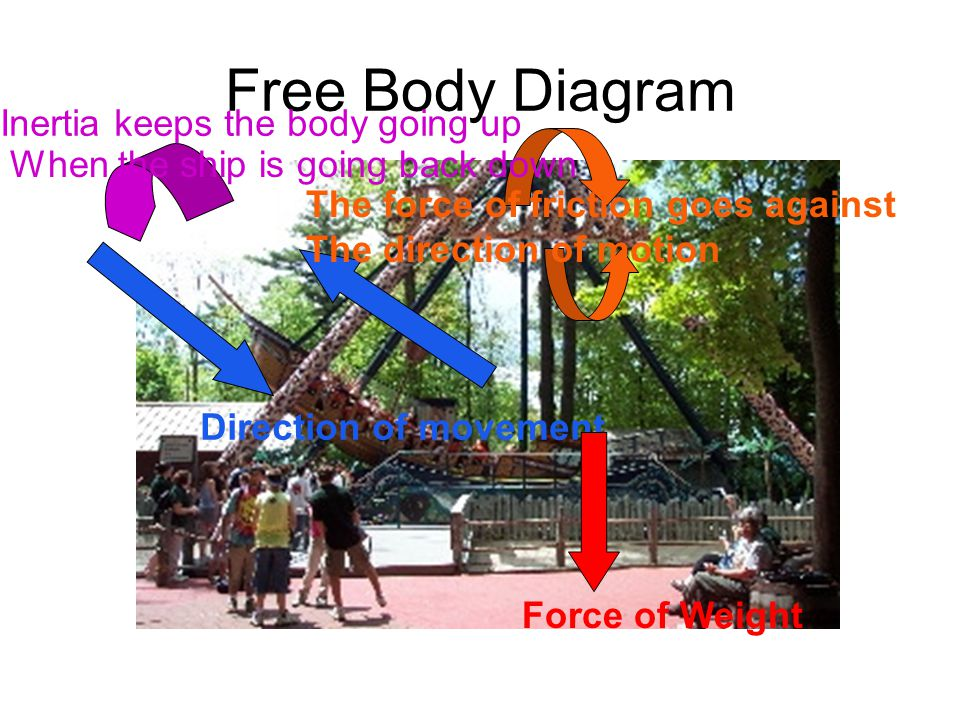 Free Body Diagram Inertia keeps the body going up