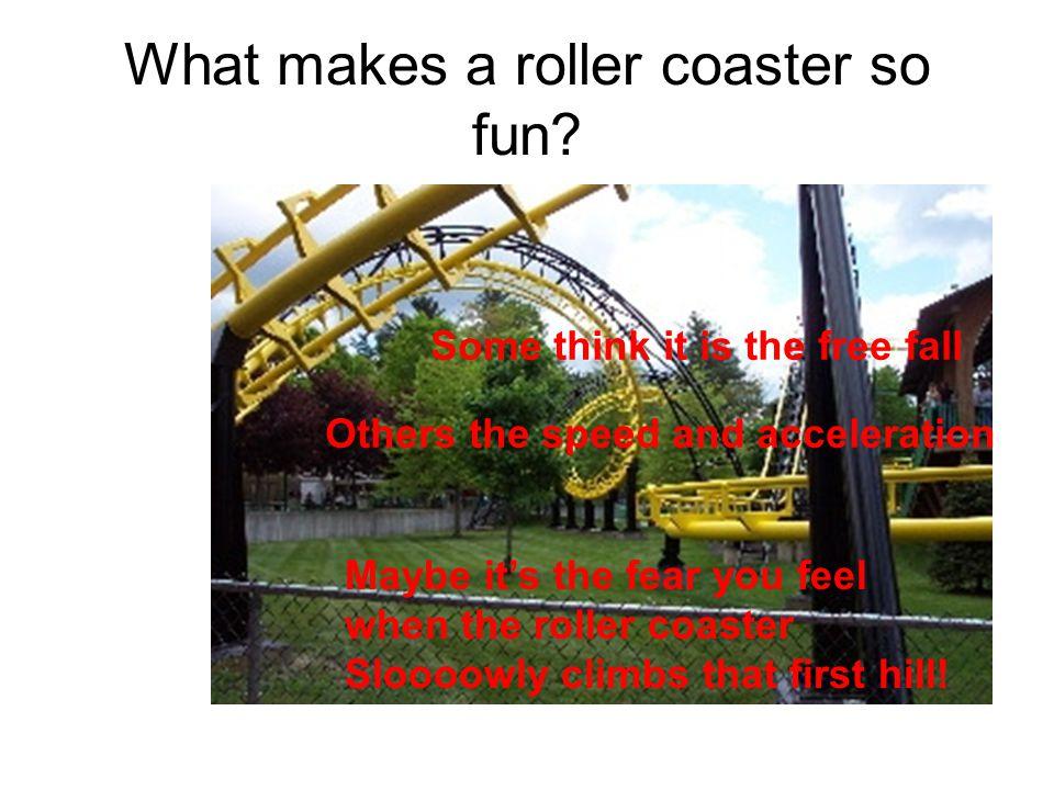 What makes a roller coaster so fun