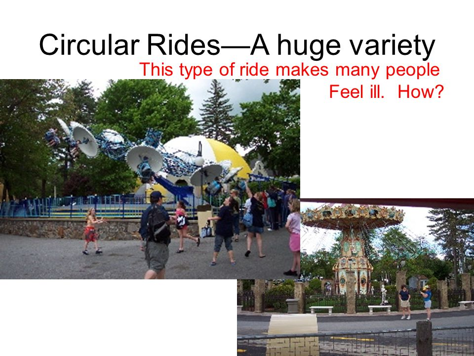 compare and contrast roller coasters and being in love What is the difference between a theme park and an amusement park   feature loads of roller coasters, might best be described as amusement parks.