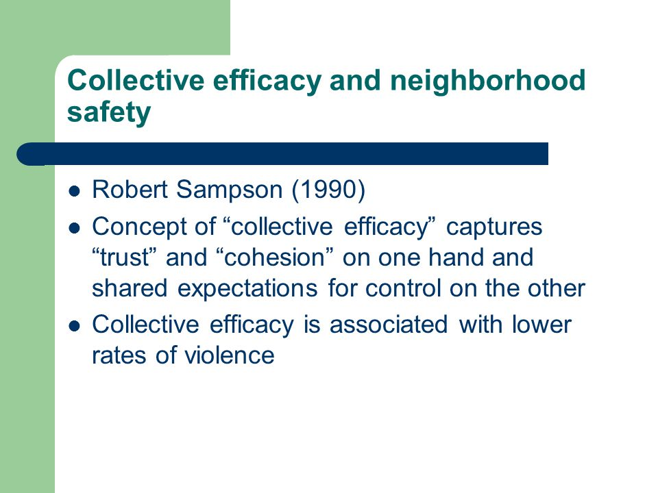 Collective efficacy and neighborhood safety