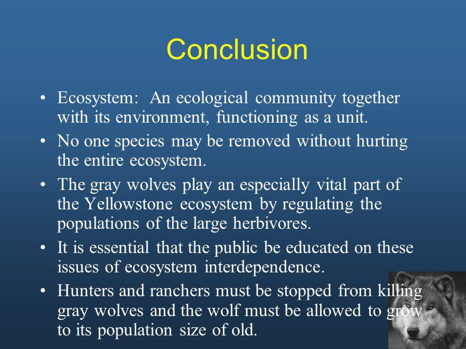 Conclusion Ecosystem: An ecological community together with its environment, functioning as a unit.