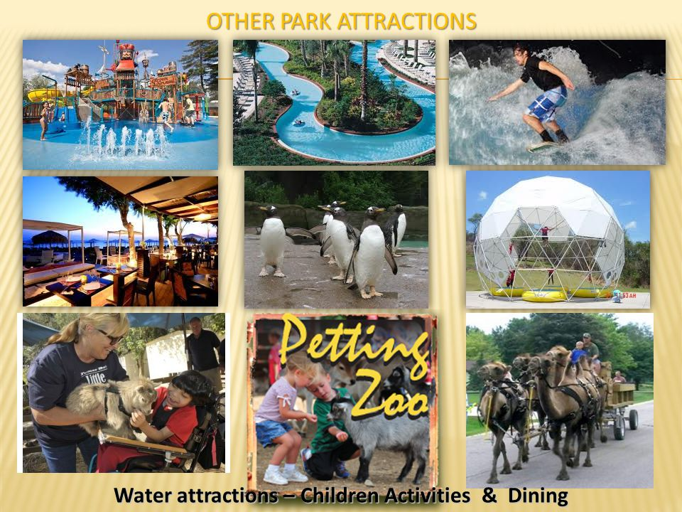 Other Park Attractions