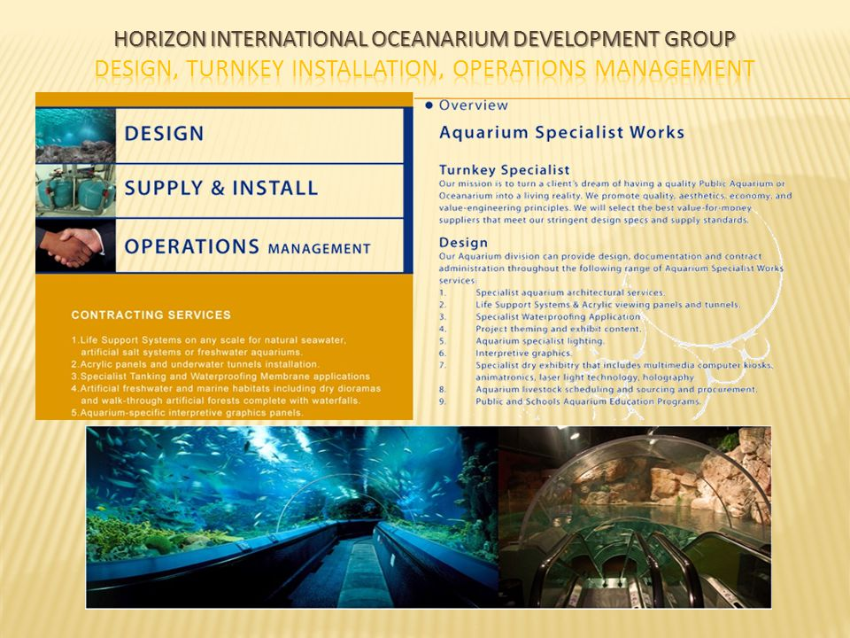 Horizon International Oceanarium Development Group Design, Turnkey Installation, Operations Management