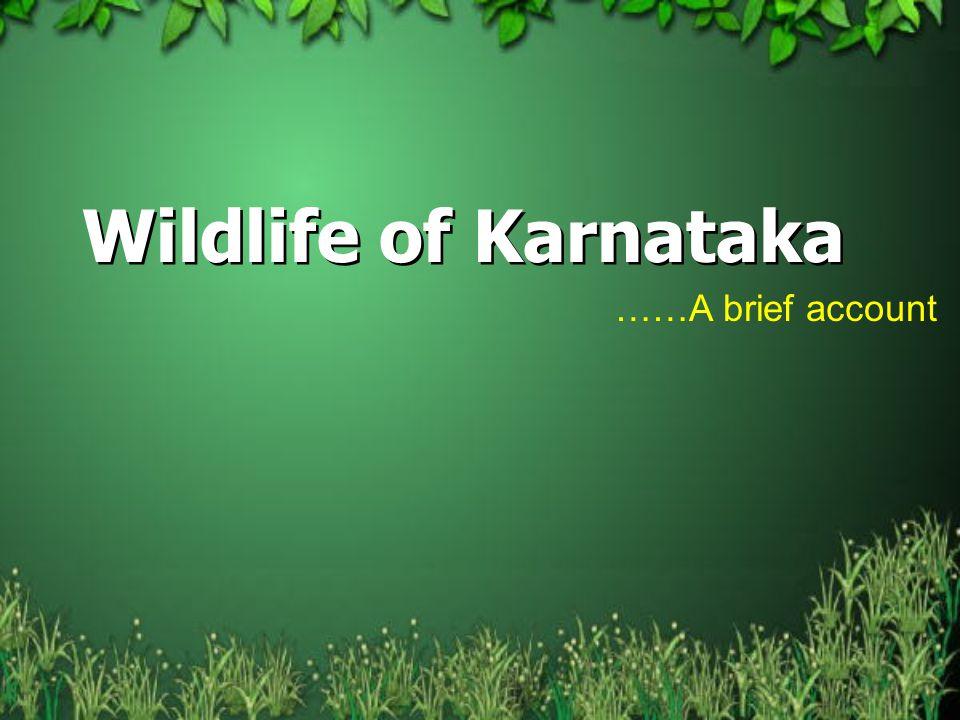 Wildlife of Karnataka ……A brief account