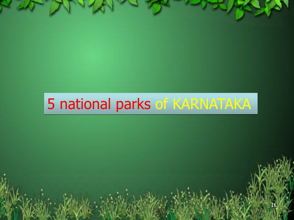 Wildlife Of Karnataka A Brief Account Ppt Video Online Download