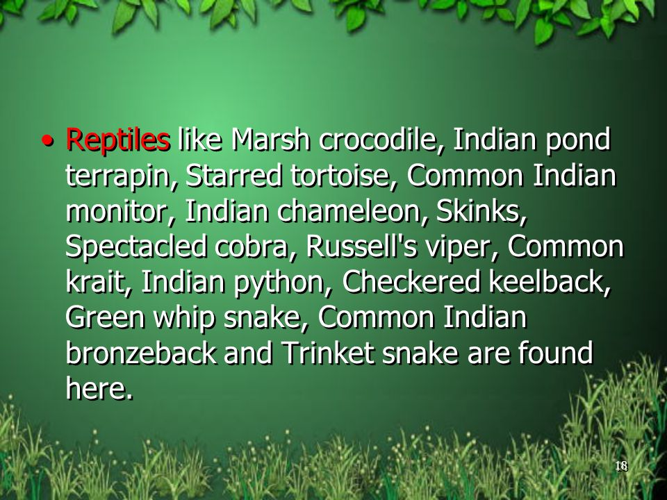 Reptiles like Marsh crocodile, Indian pond terrapin, Starred tortoise, Common Indian monitor, Indian chameleon, Skinks, Spectacled cobra, Russell s viper, Common krait, Indian python, Checkered keelback, Green whip snake, Common Indian bronzeback and Trinket snake are found here.