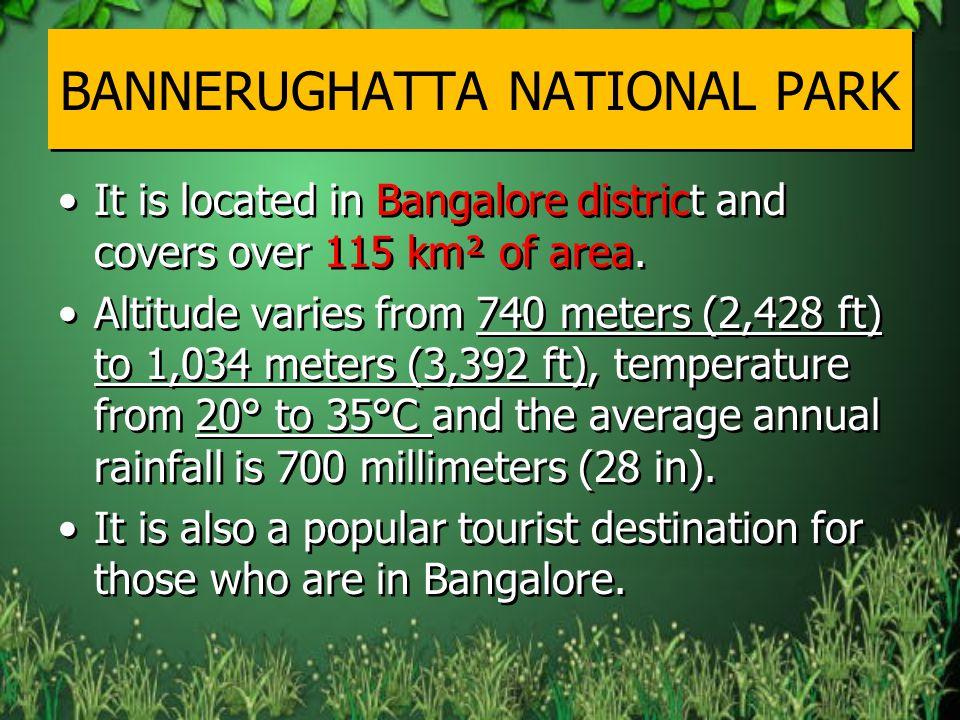 BANNERUGHATTA NATIONAL PARK