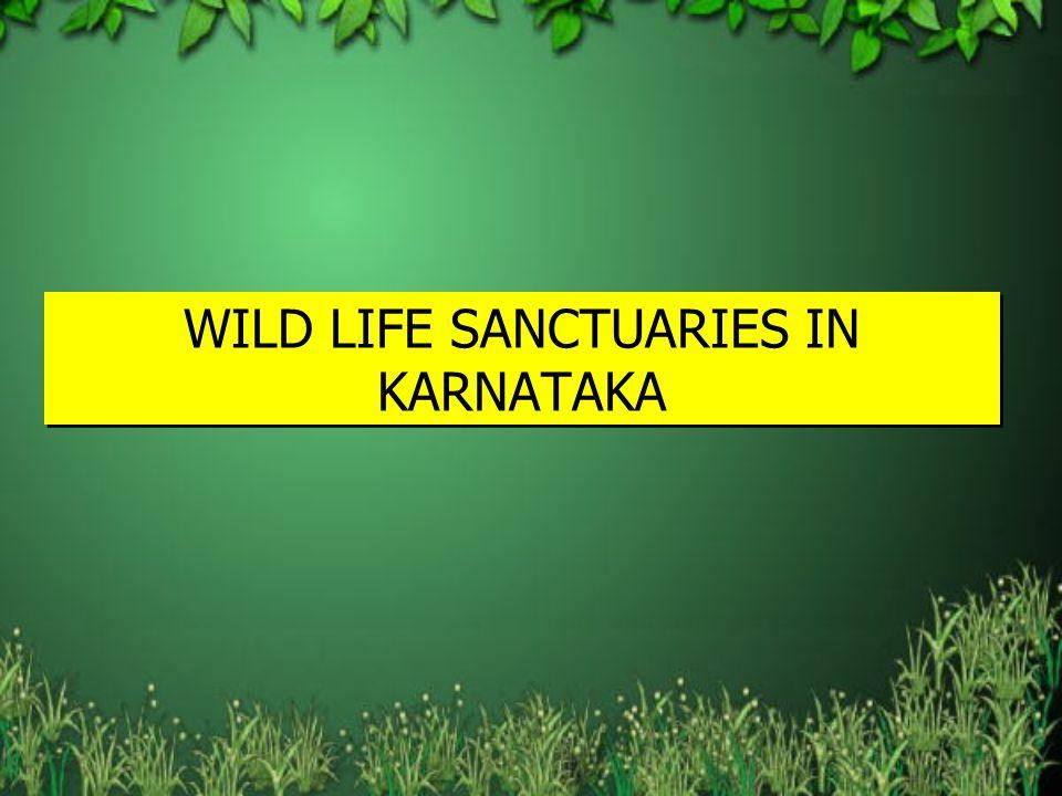 WILD LIFE SANCTUARIES IN KARNATAKA