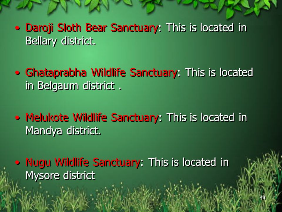 Daroji Sloth Bear Sanctuary: This is located in Bellary district.