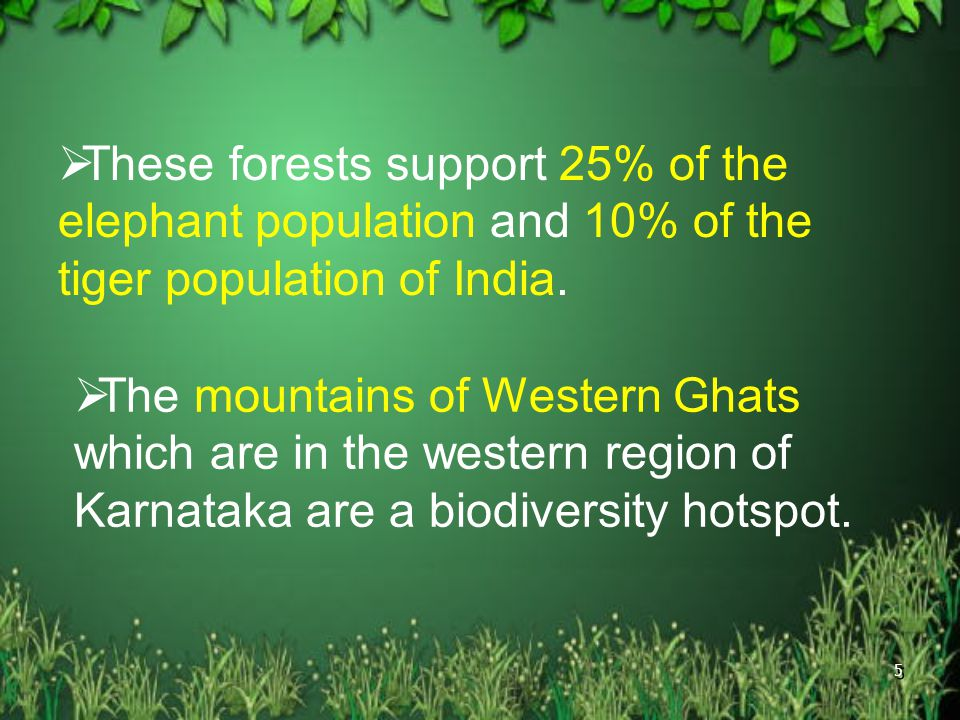 These forests support 25% of the elephant population and 10% of the tiger population of India.