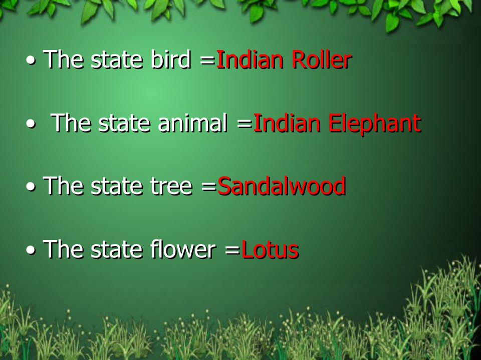 The state bird =Indian Roller
