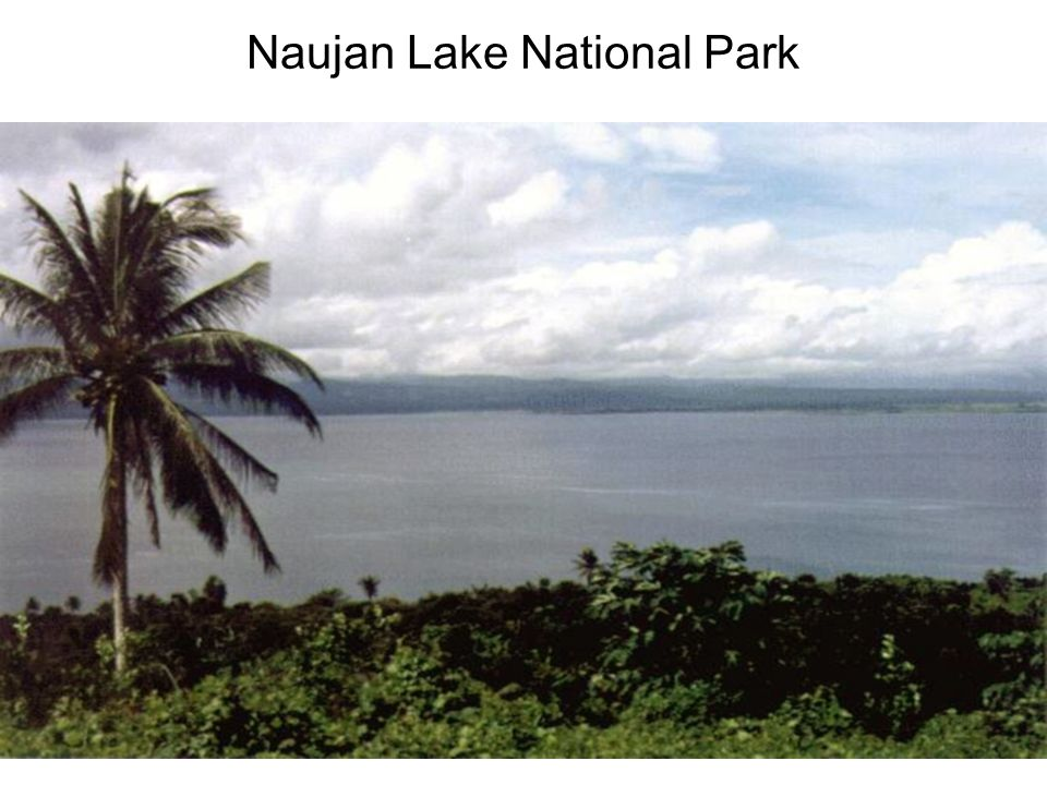 Naujan Lake National Park