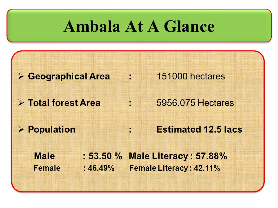 Ambala At A Glance Geographical Area : 151000 hectares