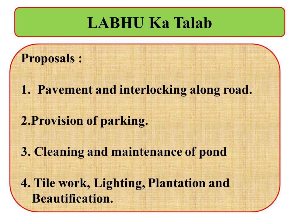 LABHU Ka Talab Proposals : Pavement and interlocking along road.