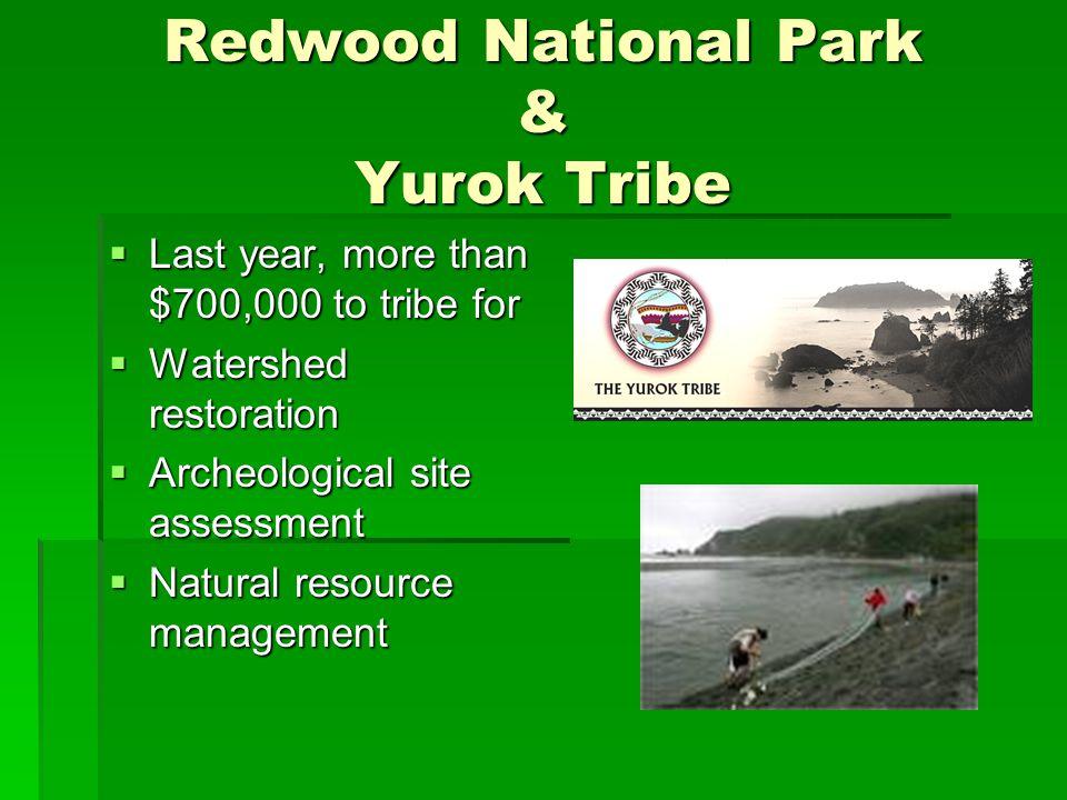 Redwood National Park & Yurok Tribe