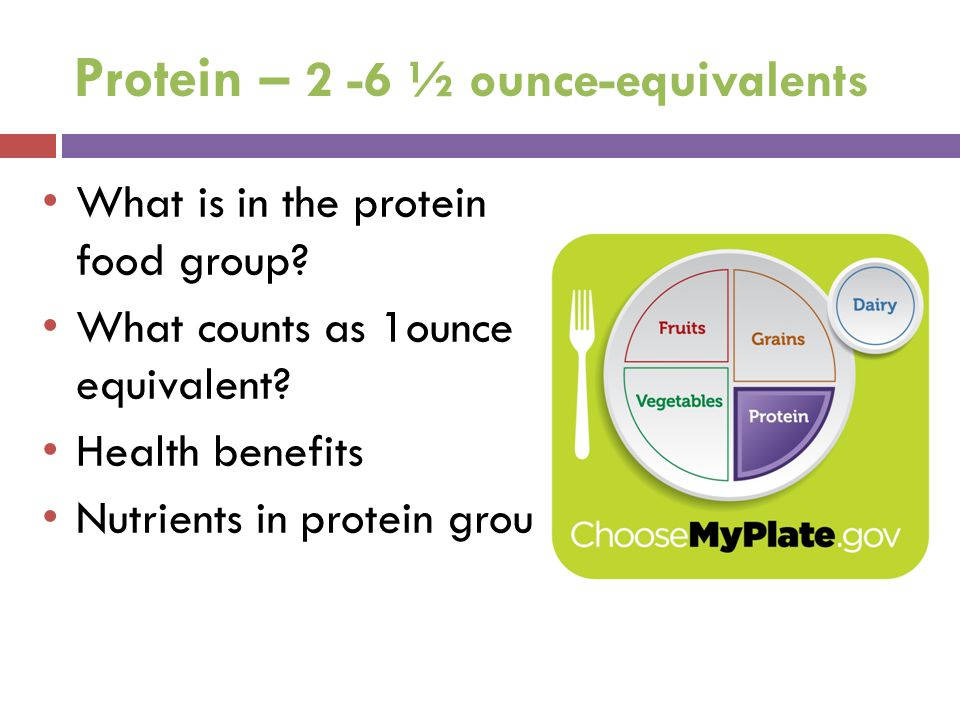 Protein – 2 -6 ½ ounce-equivalents