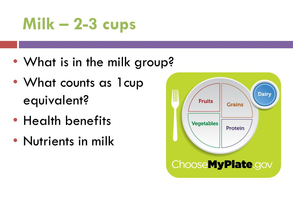 Milk – 2-3 cups What is in the milk group