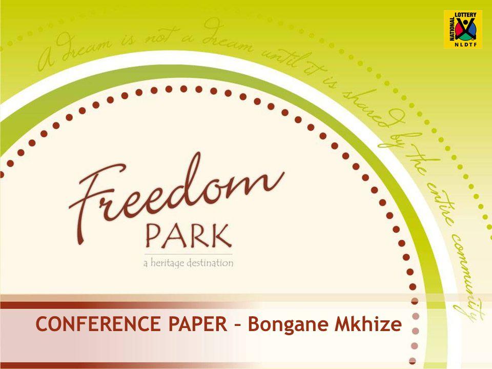 CONFERENCE PAPER – Bongane Mkhize