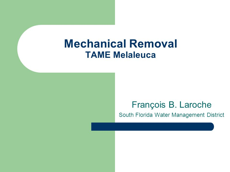 Mechanical Removal TAME Melaleuca