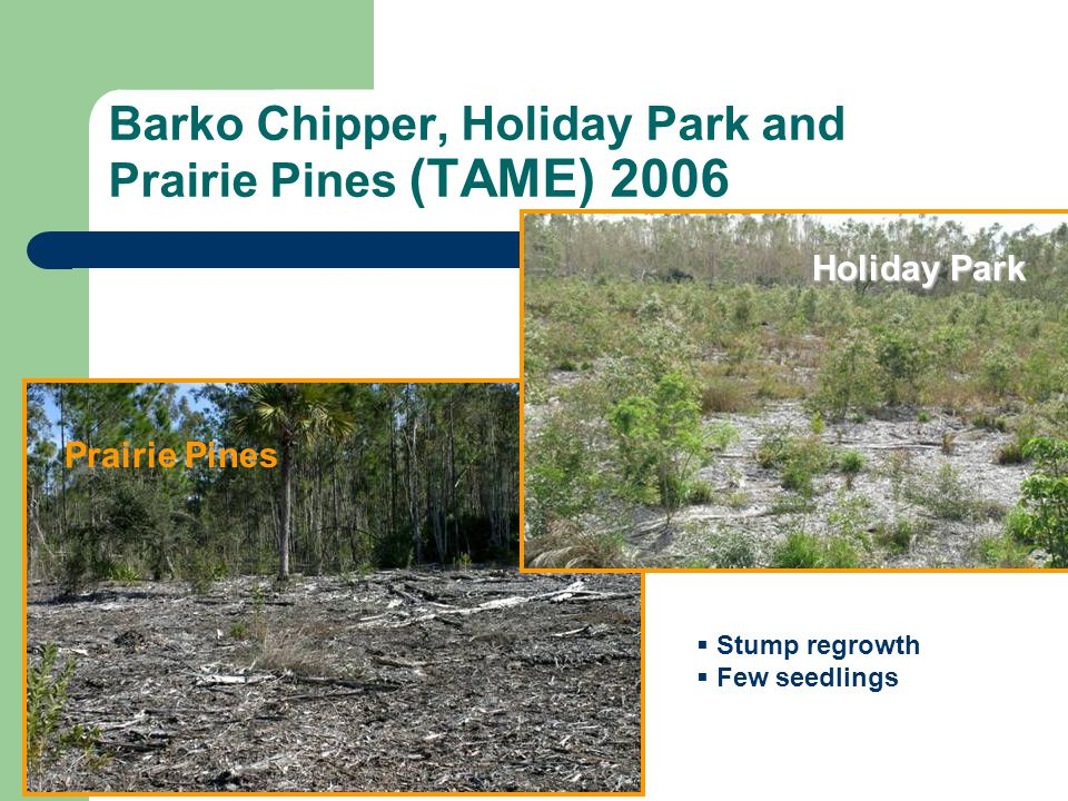 Barko Chipper, Holiday Park and Prairie Pines (TAME) 2006
