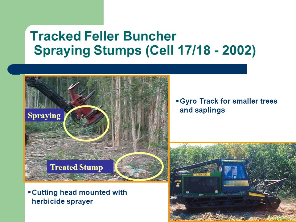 Tracked Feller Buncher Spraying Stumps (Cell 17/18 - 2002)