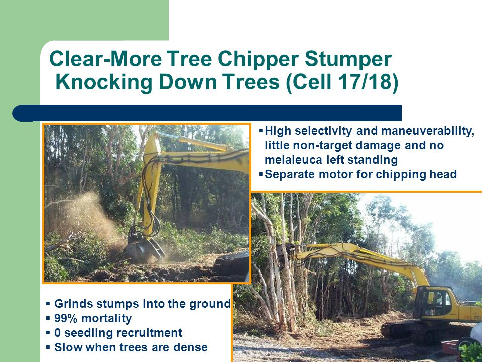 Clear-More Tree Chipper Stumper Knocking Down Trees (Cell 17/18)