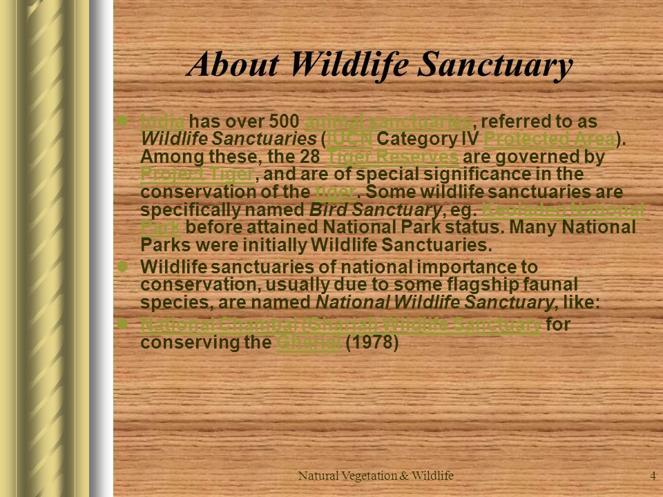 About Wildlife Sanctuary