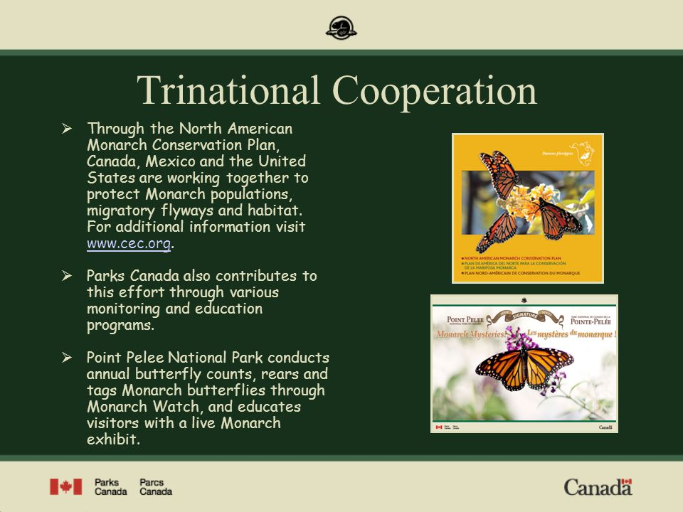 Trinational Cooperation