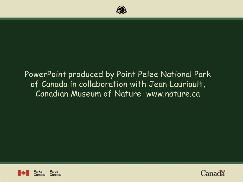 PowerPoint produced by Point Pelee National Park of Canada in collaboration with Jean Lauriault, Canadian Museum of Nature