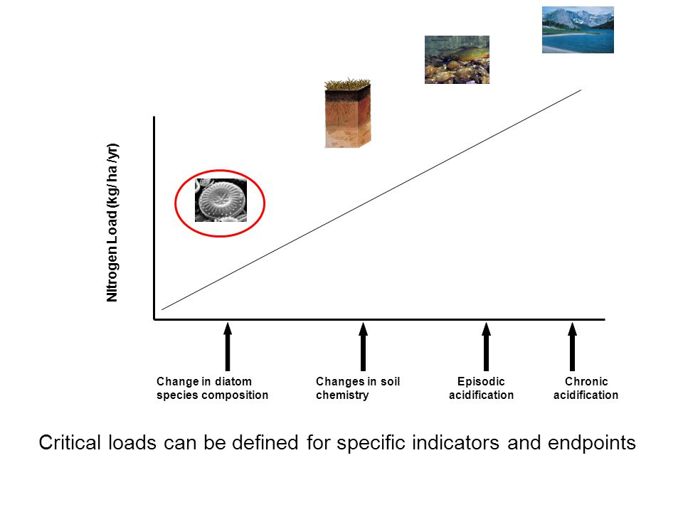 Episodic acidification Chronic acidification