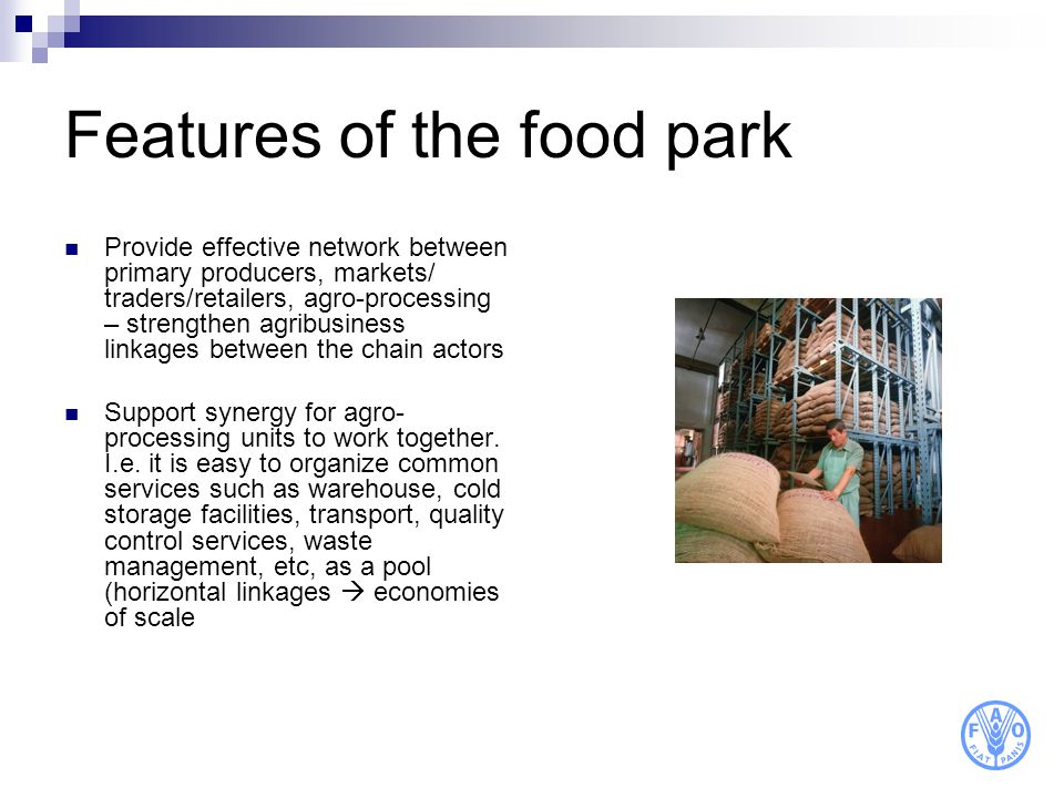 Features of the food park