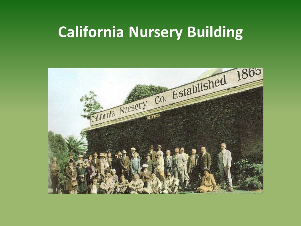 California Nursery Building