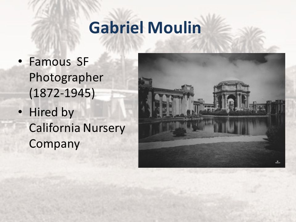 Gabriel Moulin Famous SF Photographer (1872-1945)