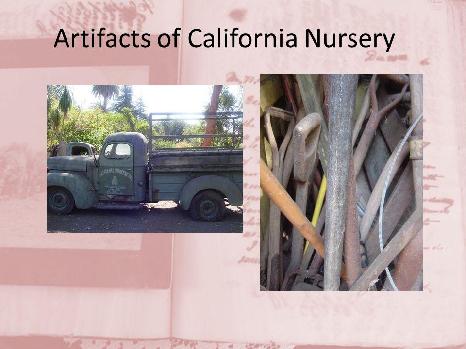 Artifacts of California Nursery