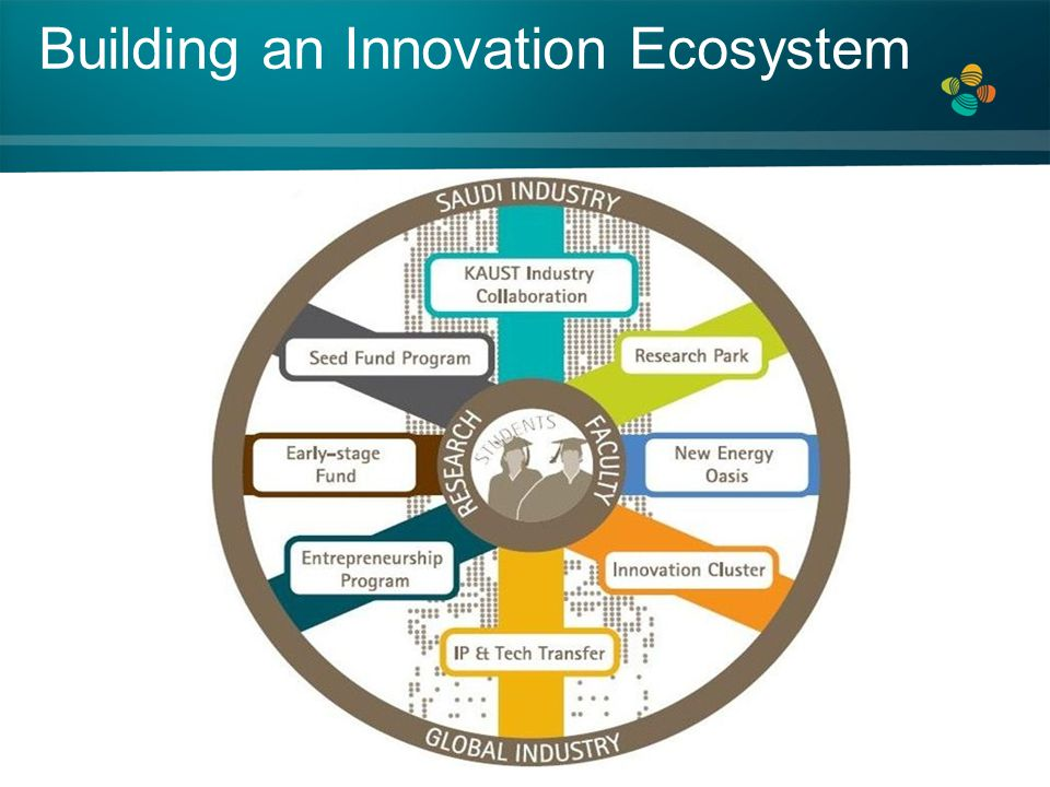Building an Innovation Ecosystem