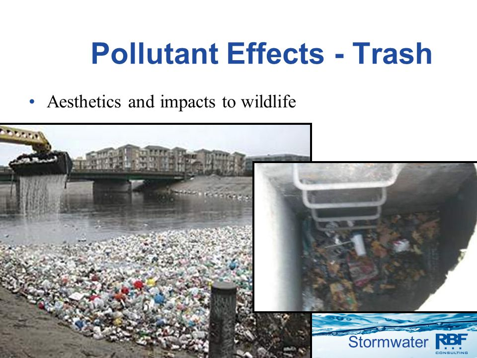 Pollutant Effects - Trash