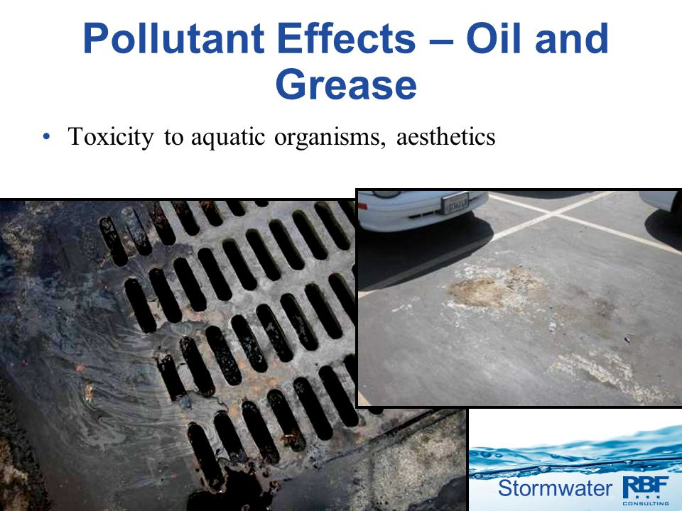 Pollutant Effects – Oil and Grease