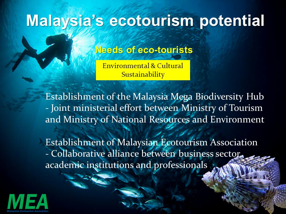 the potential of ecotourism in malaysia tourism essay Ecotourism is the new breed of tourism based around the concept of nature and cultural appreciation, espoused by many to bring significant economic benefits to the host countries as well as being a sustainable alternative to mass tourism.