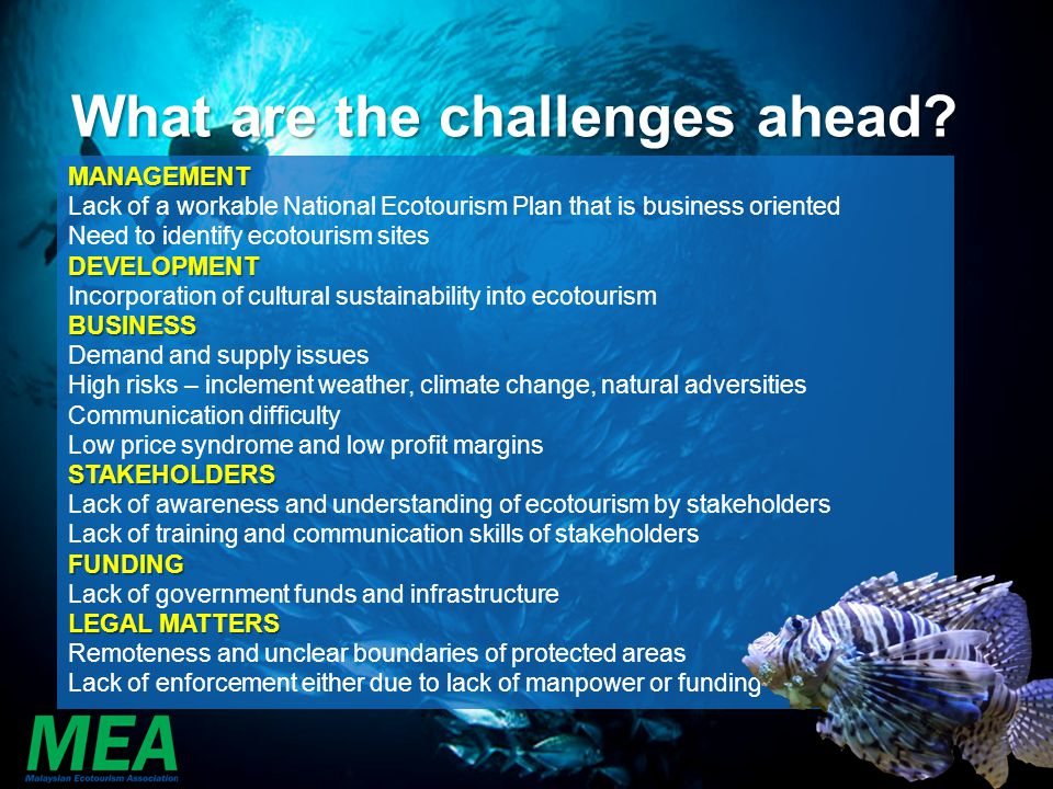 What are the challenges ahead