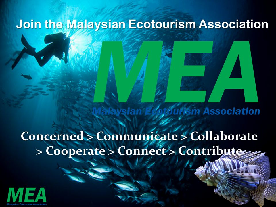 The potential of ecotourism in malaysia tourism essay