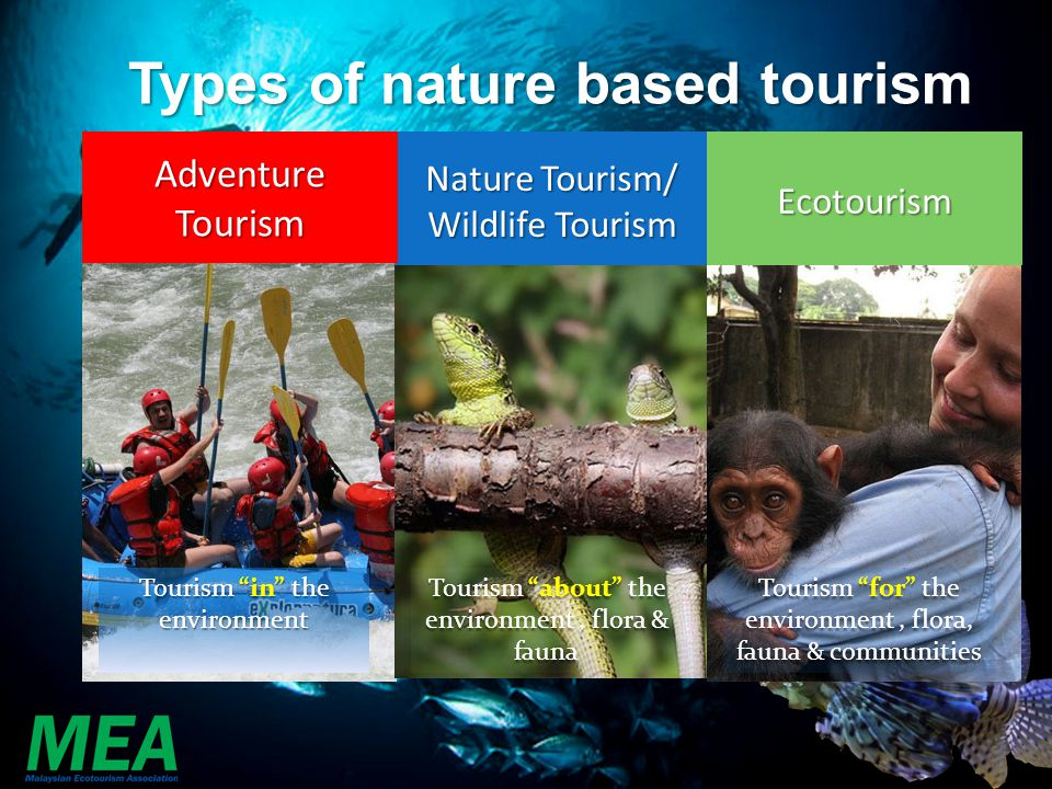 Types of nature based tourism