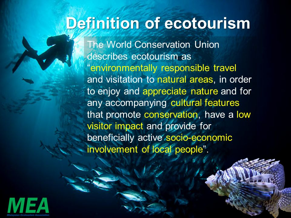 Definition of ecotourism