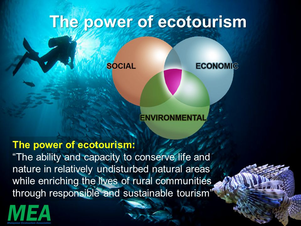 The power of ecotourism
