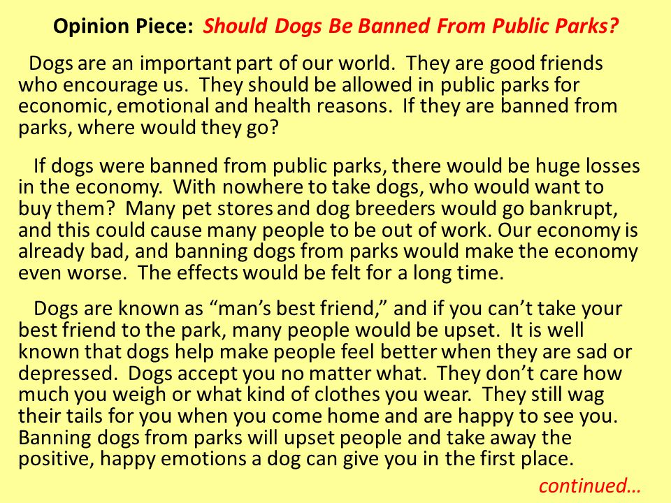 Opinion Piece: Should Dogs Be Banned From Public Parks