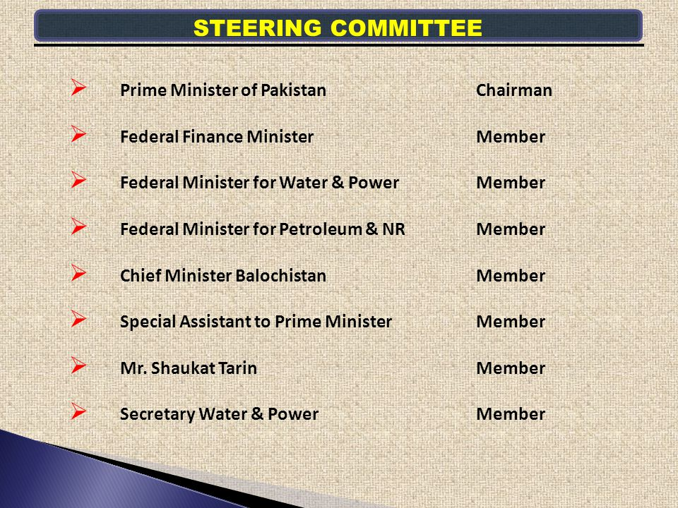 STEERING COMMITTEE Prime Minister of Pakistan Chairman