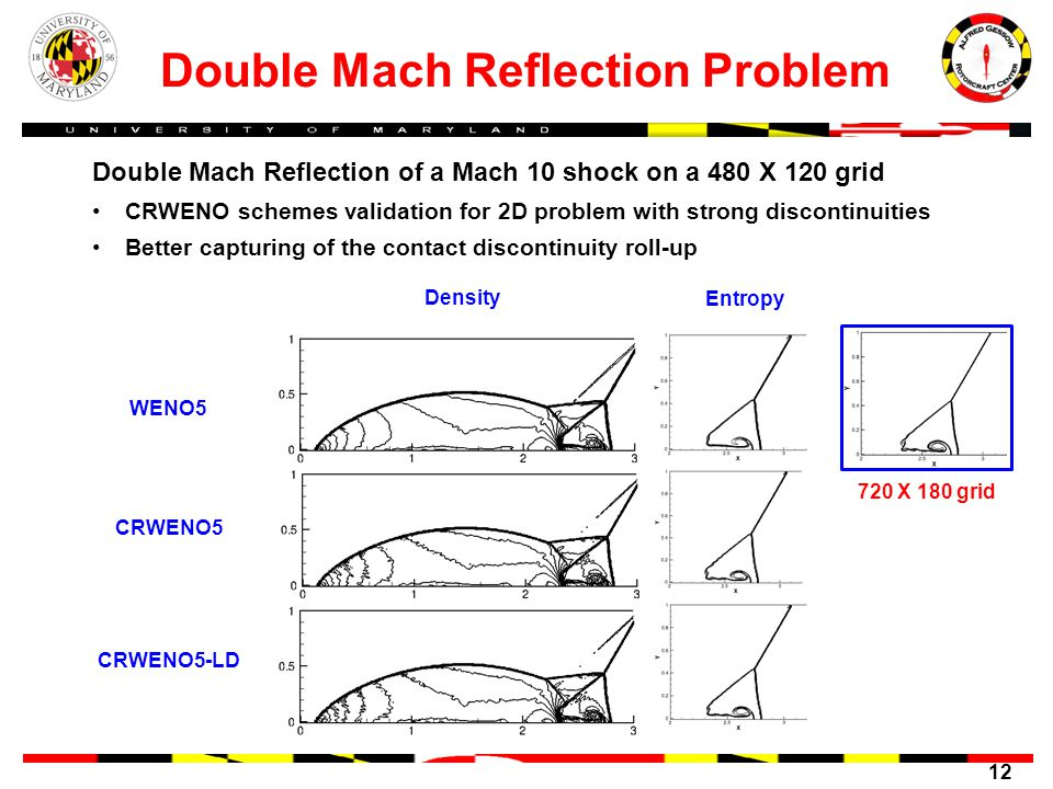 Double Mach Reflection Problem
